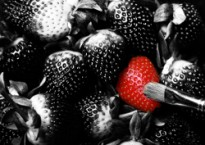 one-red-strawberry